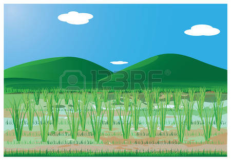 Paddy Field clipart #2, Download drawings