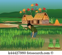 Paddy Field clipart #6, Download drawings