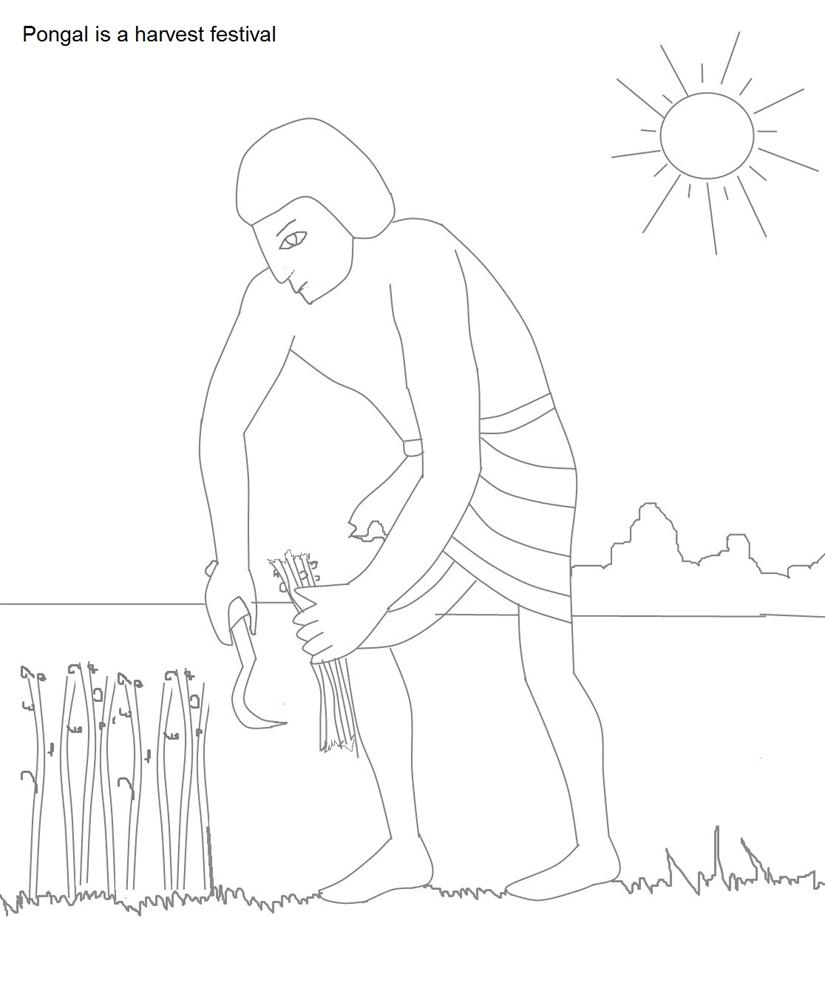 Paddy Field coloring #13, Download drawings