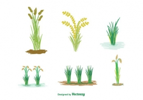 Paddy Field svg #3, Download drawings