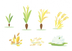 Paddy Field svg #2, Download drawings