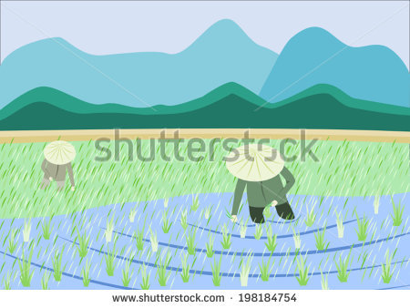 Paddy Field svg #16, Download drawings