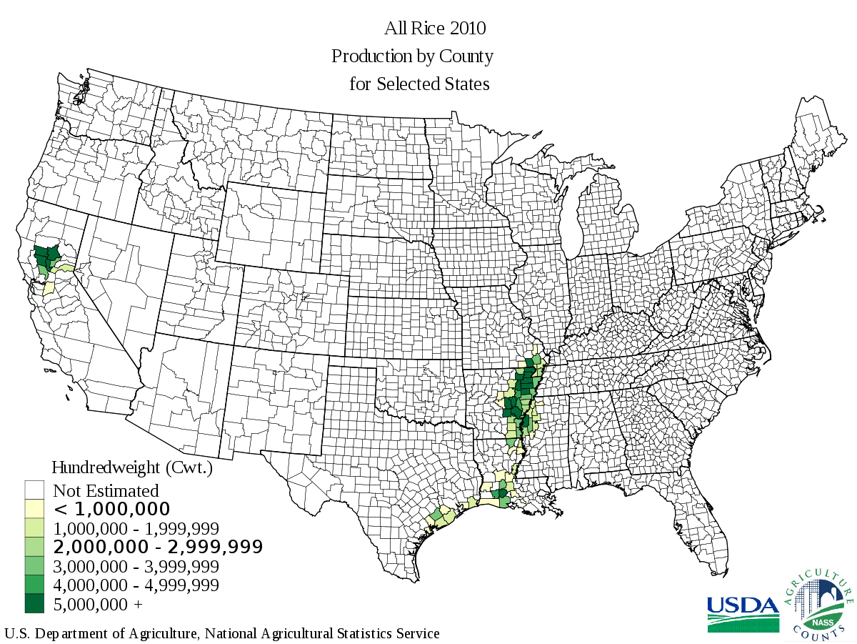 Paddy Field svg #4, Download drawings