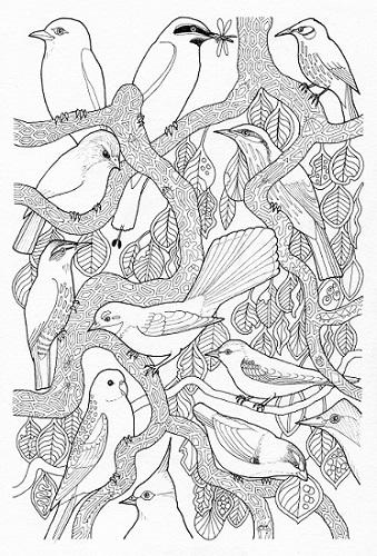 Pale-headed Rosella coloring #2, Download drawings