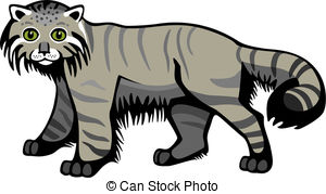 Pallas's Cat clipart #1, Download drawings