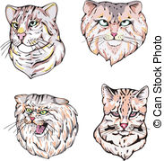 Palla's Cat clipart #17, Download drawings