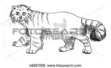 Palla's Cat clipart #5, Download drawings