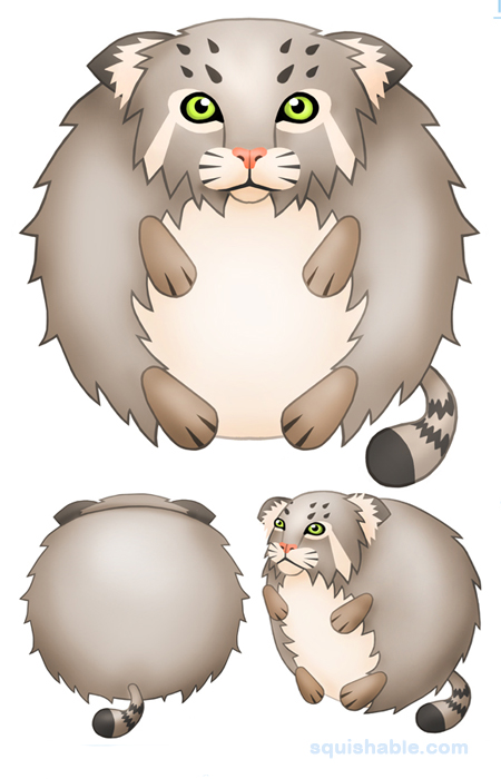Pallas's Cat clipart #16, Download drawings