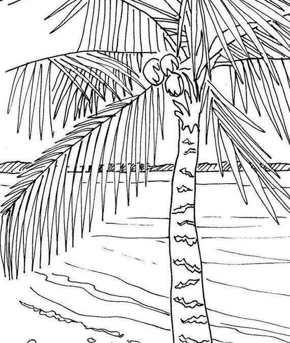 Palm Beach coloring #6, Download drawings