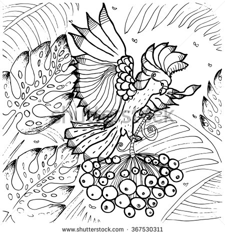 Palm Cockatoo coloring #8, Download drawings