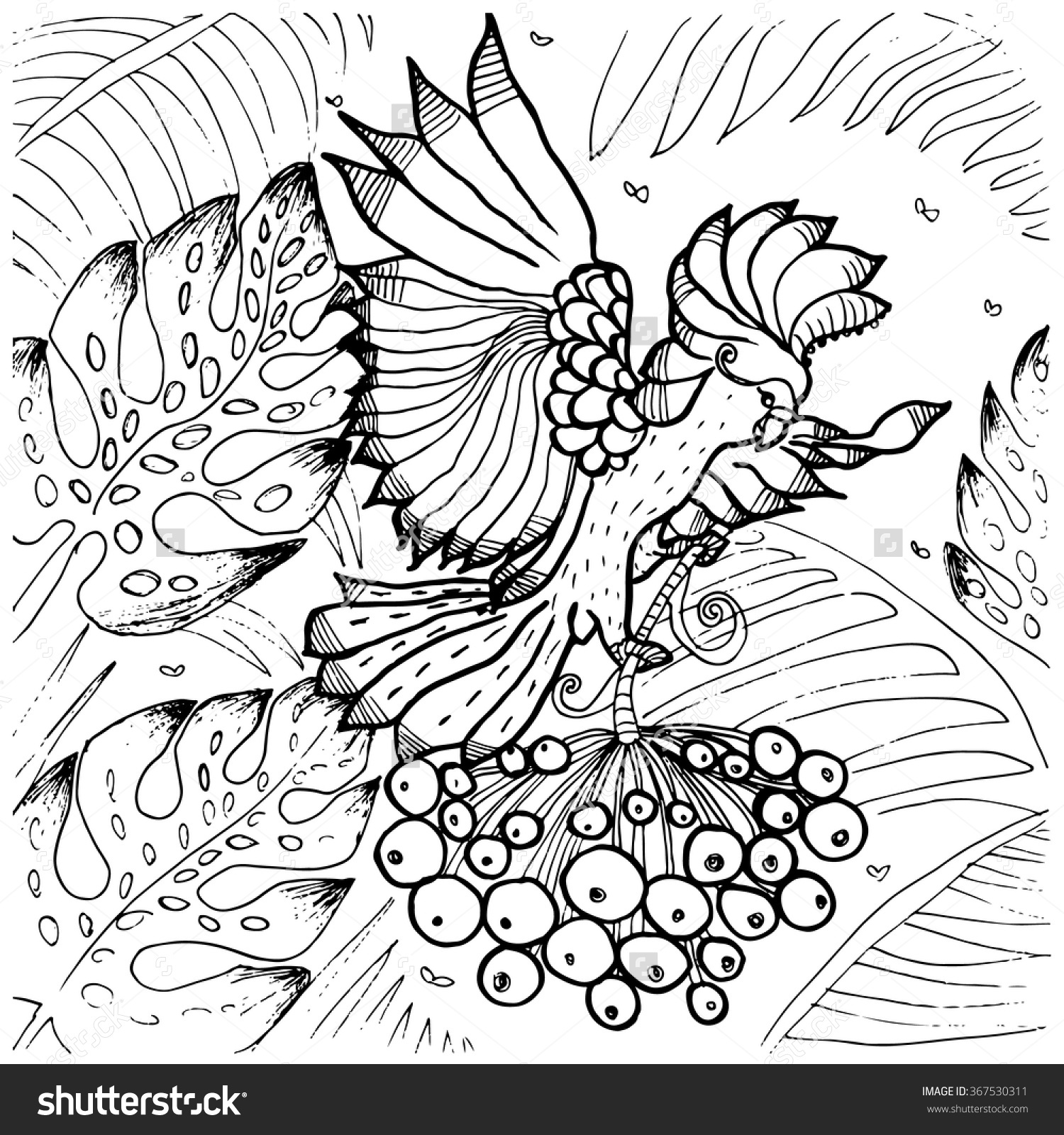 Palm Cockatoo coloring #3, Download drawings