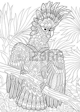 Palm Cockatoo coloring #5, Download drawings