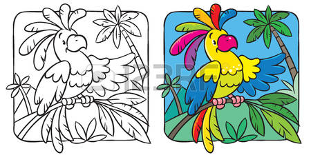 Palm Cockatoo coloring #4, Download drawings