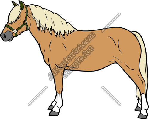 Palomino clipart #10, Download drawings