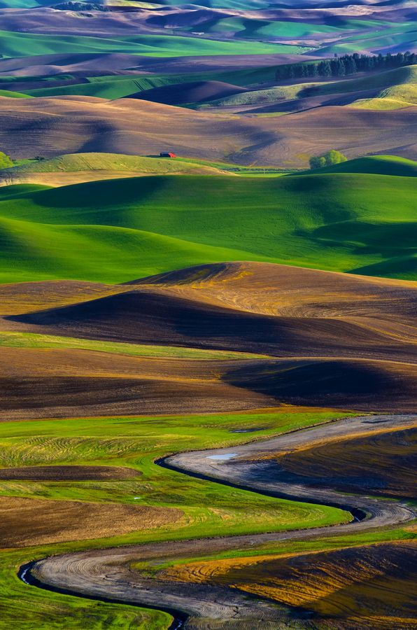 Palouse Canyon coloring #9, Download drawings