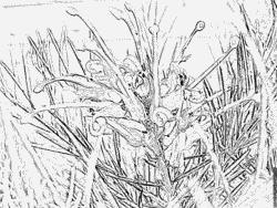 Pamukkale coloring #5, Download drawings