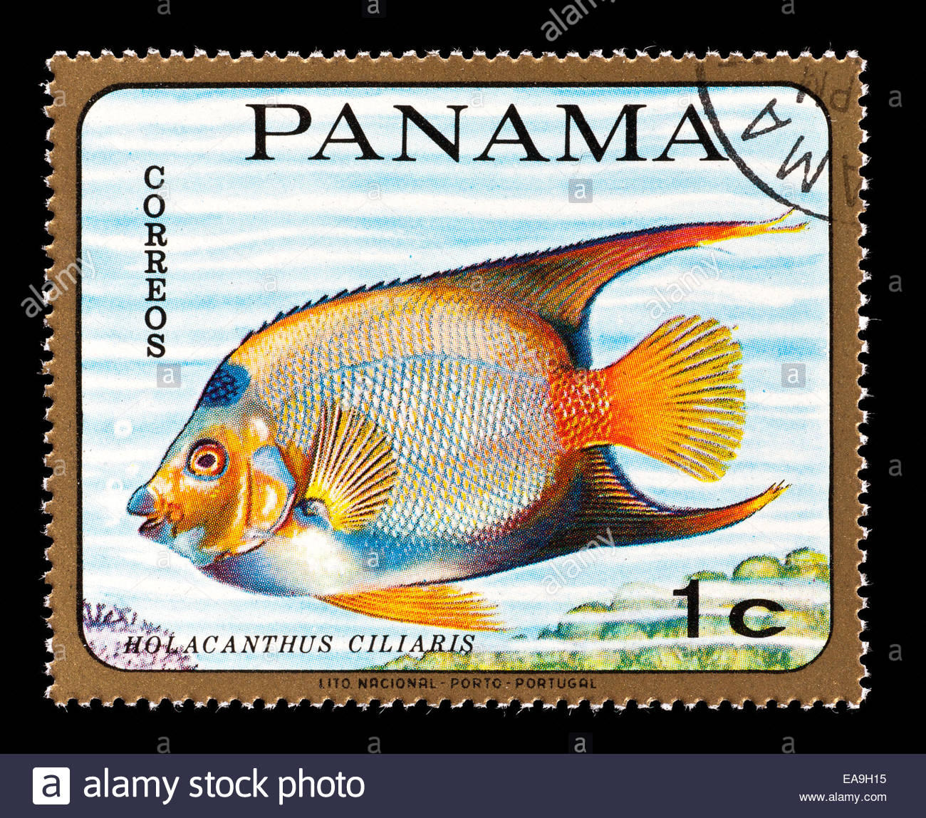 Panama Queen clipart #1, Download drawings