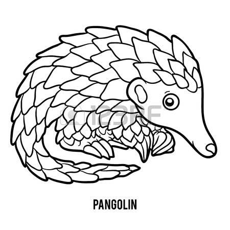 Pangolin clipart #11, Download drawings