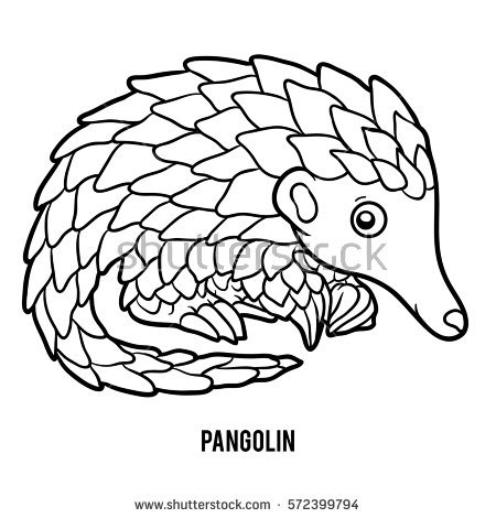 Pangolin coloring #6, Download drawings