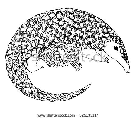 Pangolin coloring #7, Download drawings