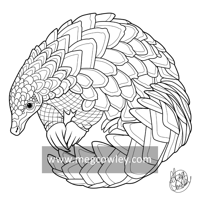 Pangolin coloring #17, Download drawings