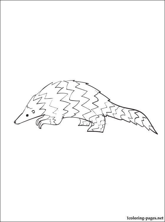 Pangolin coloring #19, Download drawings