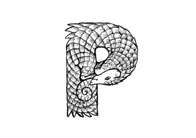 Pangolin coloring #20, Download drawings