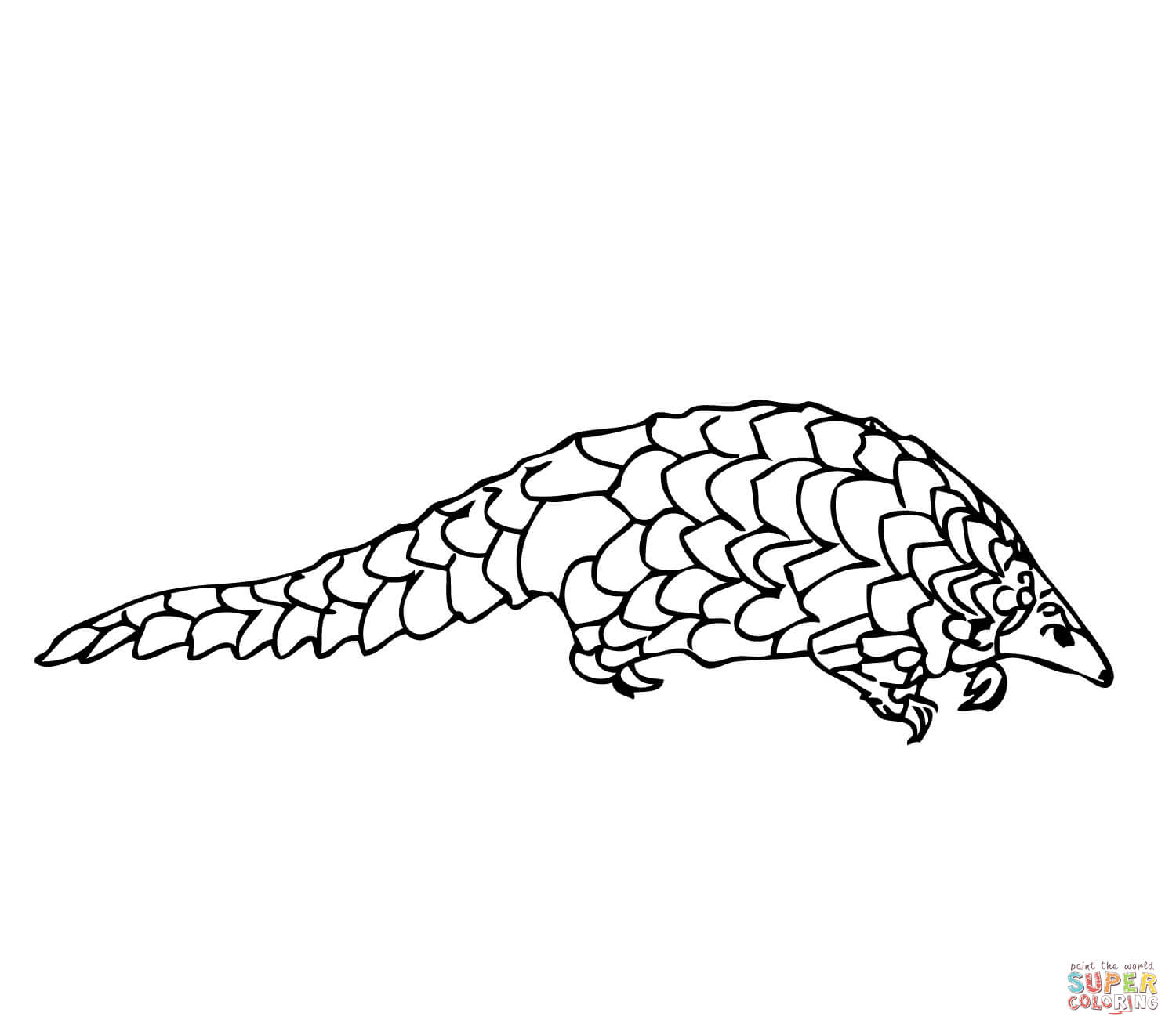Pangolin coloring #11, Download drawings