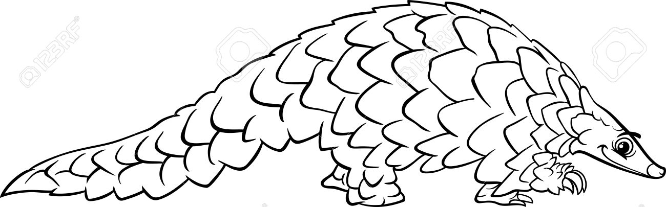 Pangolin coloring #3, Download drawings