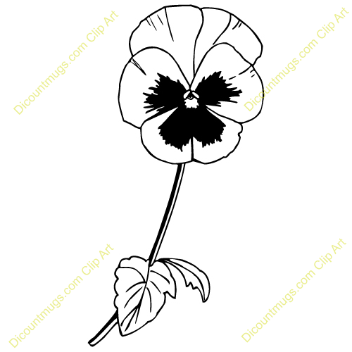 Pansy clipart #18, Download drawings