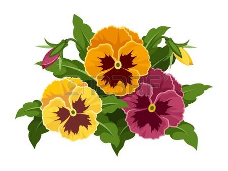 Pansy clipart #2, Download drawings