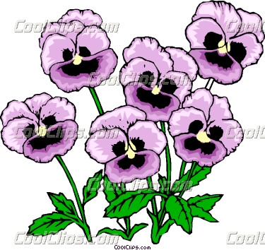 Pansy clipart #17, Download drawings