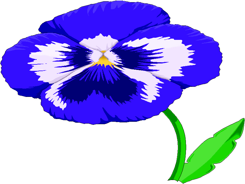 Pansy clipart #14, Download drawings
