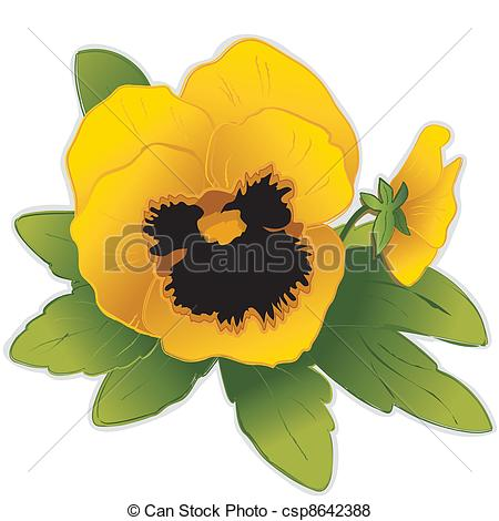 Pansy clipart #5, Download drawings