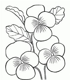 Pansy coloring #16, Download drawings