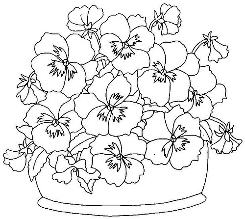 Pansy coloring #17, Download drawings
