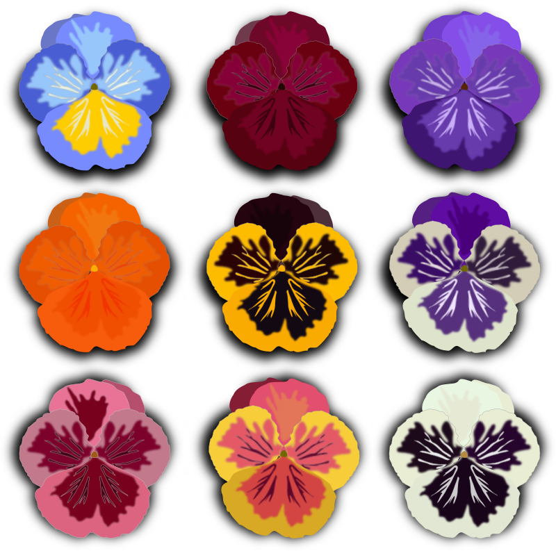 Pansy svg #19, Download drawings