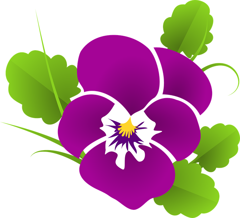Pansy svg #7, Download drawings
