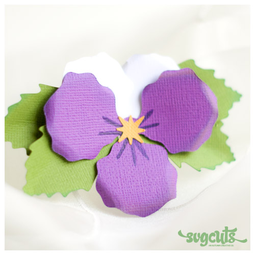 Pansy svg #16, Download drawings