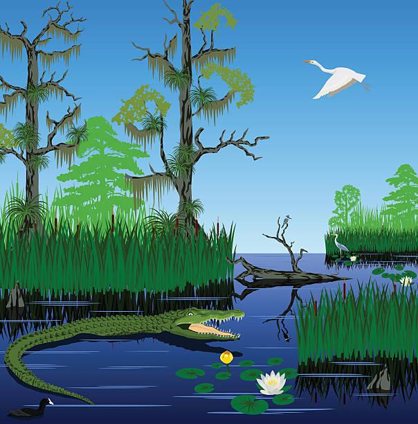 Pantanal clipart #6, Download drawings