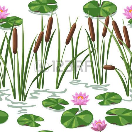 Pantanal clipart #12, Download drawings
