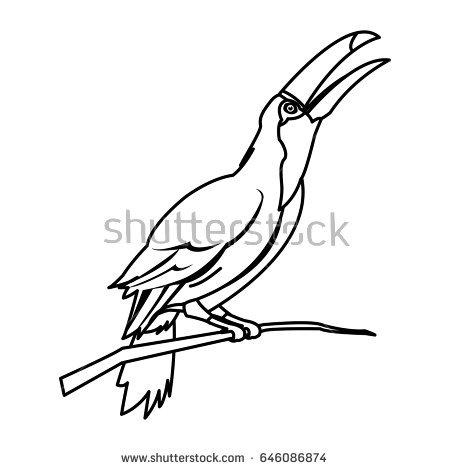 Pantanal coloring #12, Download drawings