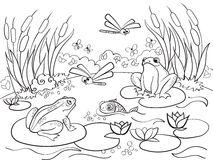 Pantanal coloring #7, Download drawings