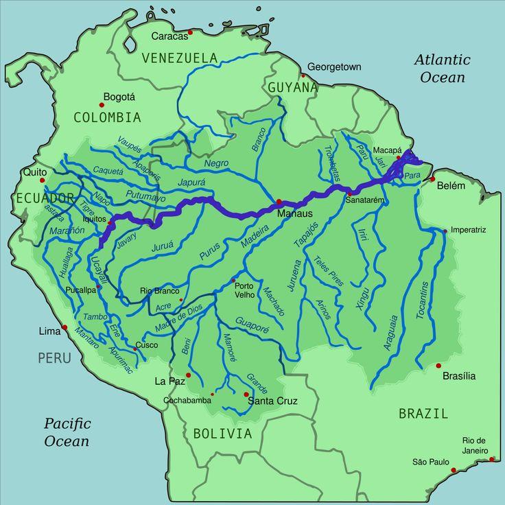 Pantanal svg #6, Download drawings
