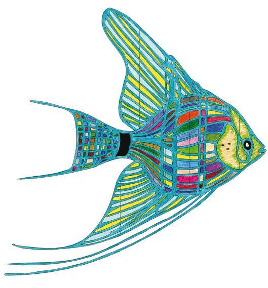 Paparoa coloring #19, Download drawings
