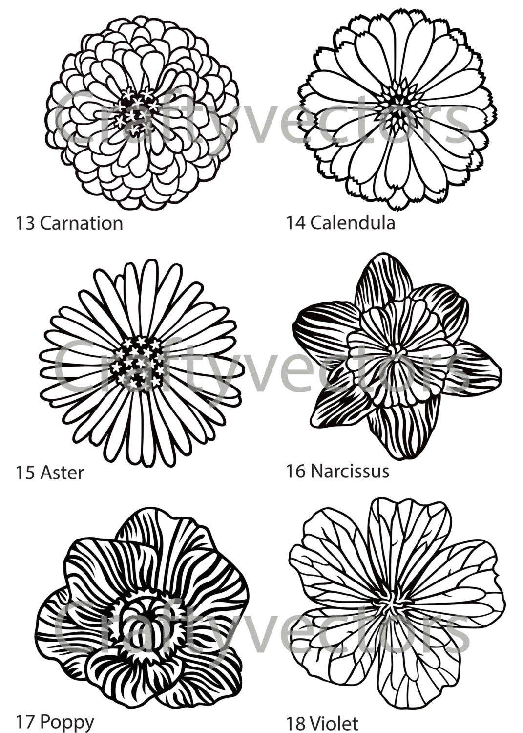 Paperwhite Narcissus svg #6, Download drawings