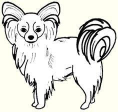 Papillon clipart #12, Download drawings