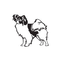 Papillon clipart #6, Download drawings