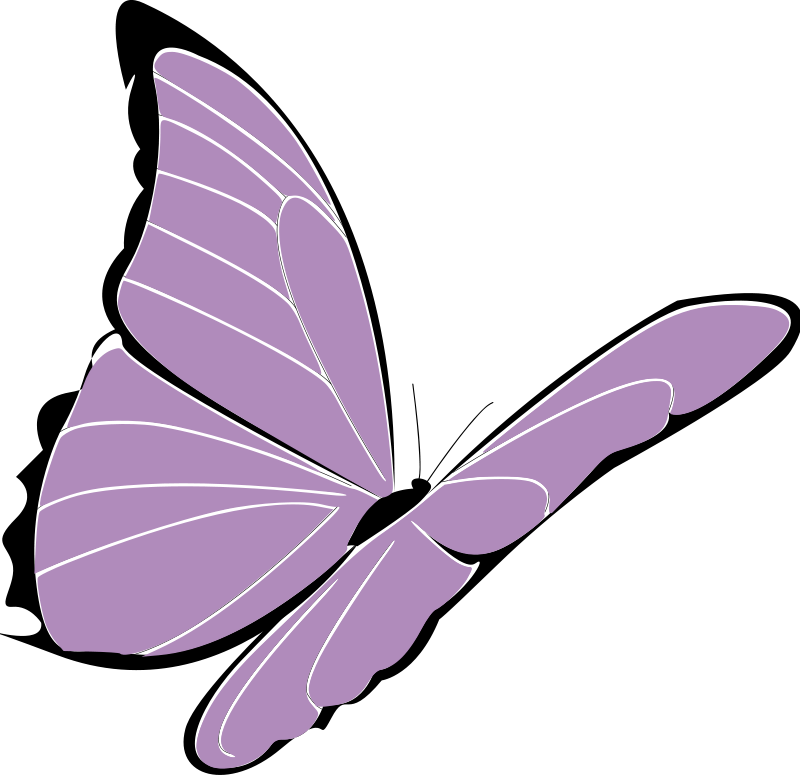 Papillon clipart #8, Download drawings