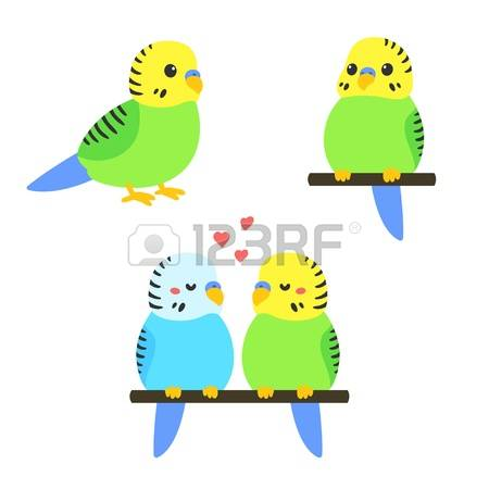 Parakeet clipart #6, Download drawings